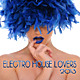 Electro House Lovers 2013